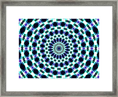 Showy No.2 Framed Print by Danny Lally