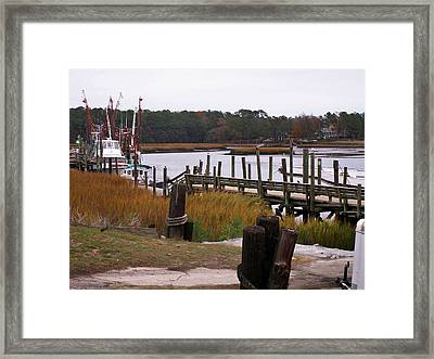 Shrimpin Ready Framed Print by Carolyn Ardolino