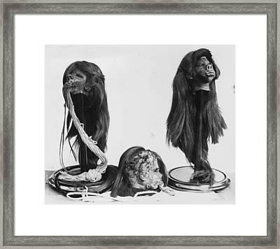 Shrunken Heads Framed Print by Kirby