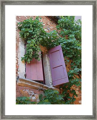 Shutters And Grapevines Framed Print by Sandra Anderson