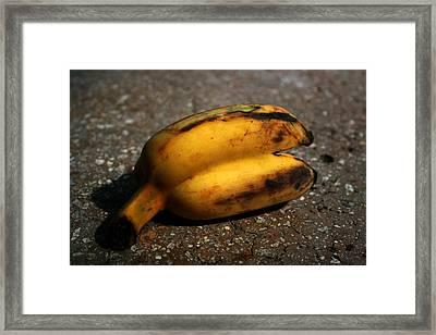 Siam Banana Framed Print