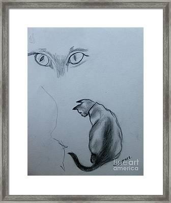 Siamese Cat Study Framed Print by Caroline Street