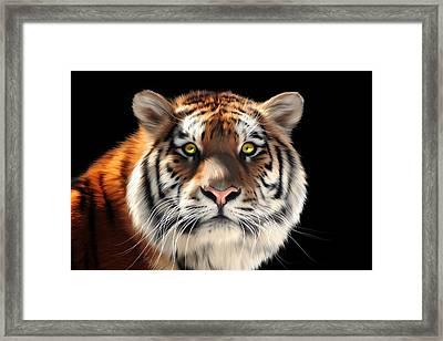 Siberian Tiger Framed Print by Julie L Hoddinott