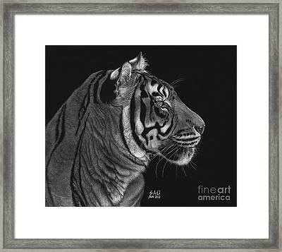 Siberian Tiger Framed Print by Sheryl Unwin