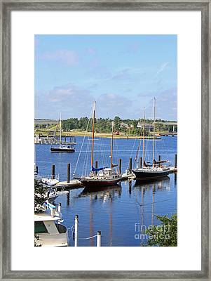 Side By Side IIi Framed Print by Suzanne Gaff