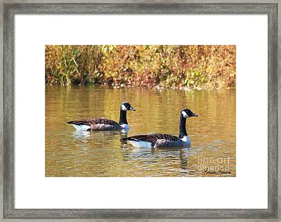 Side By Side Framed Print by Lorraine Louwerse