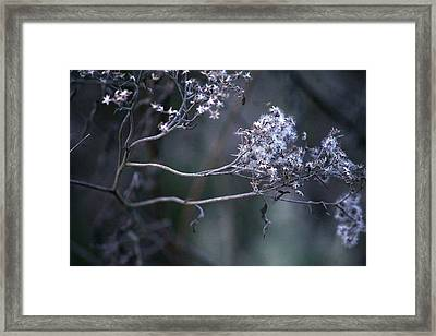 Side Of The Road Framed Print by Bret Worrell