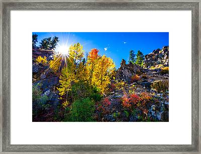 Sierra Nevada Fall Colors Lassen County California Framed Print by Scott McGuire
