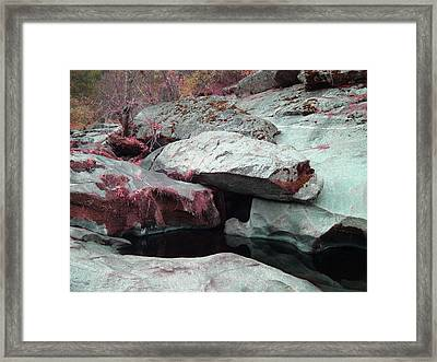 Sierra Nevada Forest Framed Print by Naxart Studio