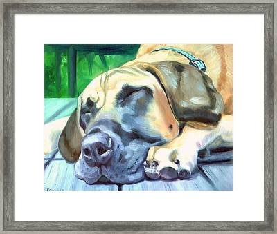 Siesta - Great Dane Framed Print