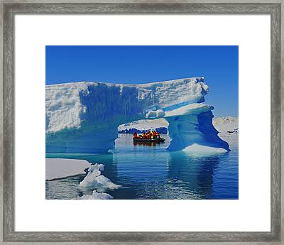 Signs Of The Zodiac Framed Print by Tony Beck