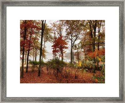 Silent Autumn Framed Print