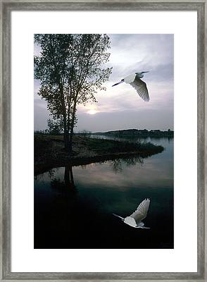 Silent Passage Framed Print