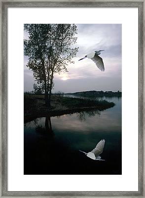 Silent Passage Framed Print