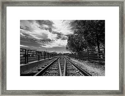 Framed Print featuring the photograph Silent Spur by Tom Gort