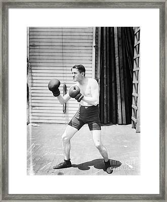Silent Still: Boxer Framed Print by Granger