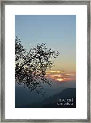 Silhouette At Sunset Framed Print by Bruno Santoro