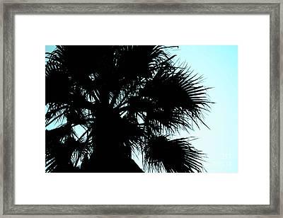 Silhouette Framed Print by Kim Pascu