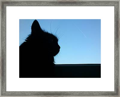 Silhouette Framed Print by Lucy D