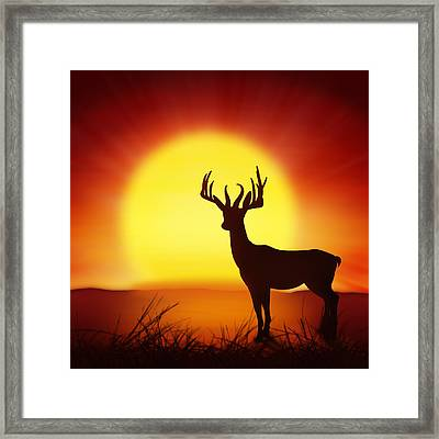 Silhouette Of Deer With Big Sun Framed Print
