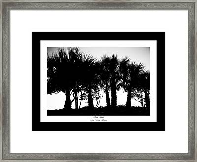 Silhouette Palm Sunset Framed Print by Betsy Knapp