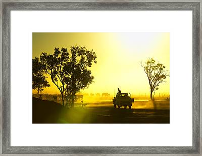 Silhouetted Cattle Muster At Sunset, Armraynald Station Framed Print by Johnny Haglund