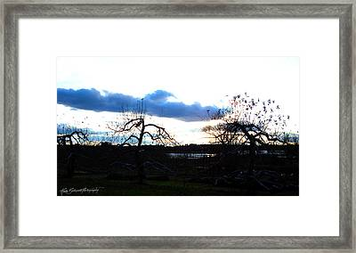 Silhouettes In Cerulean And Cobalt Framed Print by Ruth Bodycott