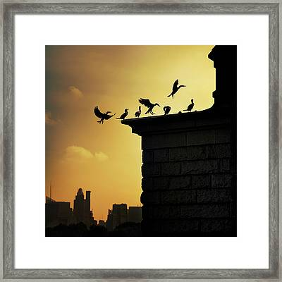 Silhouettes Of Cormorants Framed Print by Istvan Kadar Photography