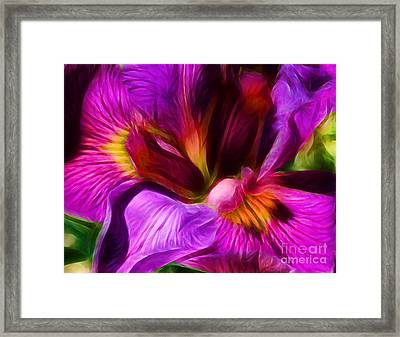 Silk And Satin Framed Print by Judi Bagwell