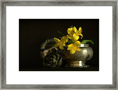 Silver And Golden Framed Print by Cindy Rubin