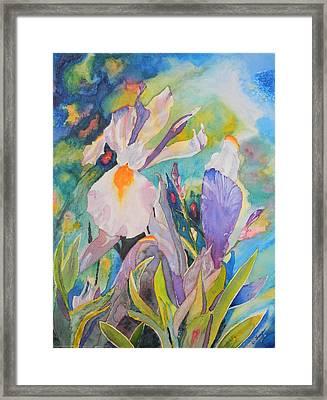 Silver Beauty Iris  Framed Print by Warren Thompson