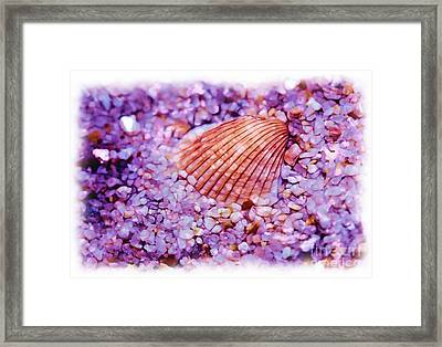 Silver Bells And Cockle Shells . . . Framed Print by Judi Bagwell