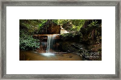 Silver Falls On Berry Creek Trail Framed Print