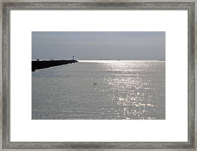 Silver Framed Print by Heidi Smith