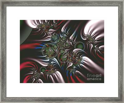 Silver Seedpods Framed Print by Claire Bull