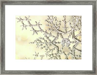 Silver Snowflake Framed Print by Sandra Cunningham