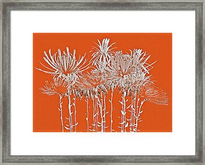 Silver Stems Framed Print by James Mancini Heath