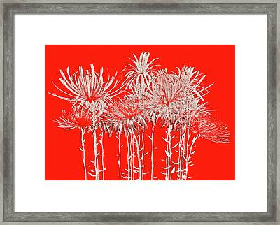 Silver Stems On Red Framed Print by James Mancini Heath