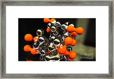Silver Tango Framed Print
