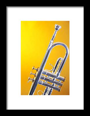 Yellow Trumpet Framed Prints