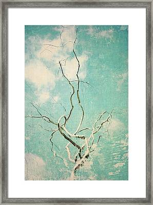 Silver Twist Framed Print by Sharon Kalstek-Coty