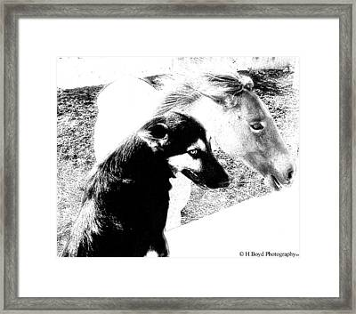 Similar Spirits Framed Print by Heather  Boyd