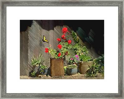 Found Beauty Mexico Framed Print
