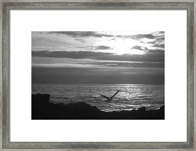 Sailing Framed Print by Lora Lee Chapman