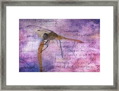 Simple Pleasures Iv Framed Print by Rhonda Strickland