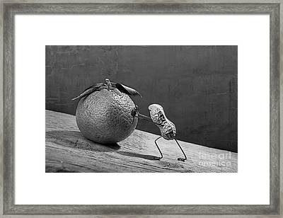 Simple Things - Sisyphos 02 Framed Print by Nailia Schwarz