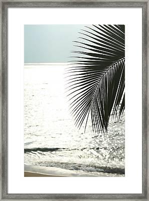 Simple Things 3 Framed Print
