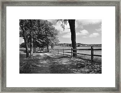 Simple Times Framed Print by Catherine Reusch Daley