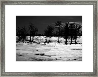 Simple Trees Framed Print by Empty Wall
