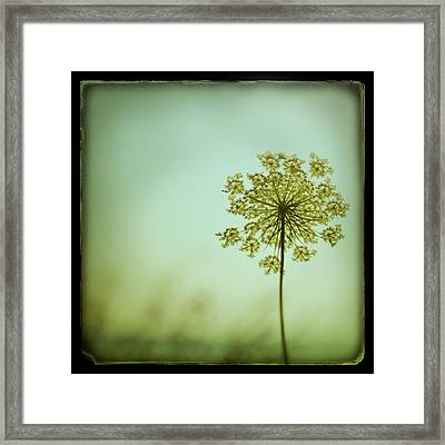 Simplexity Framed Print by Irene Suchocki